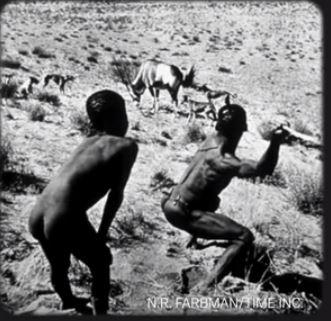 Bushman hunters 62