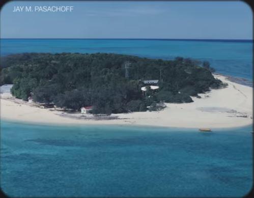 Heron Island Australia 41