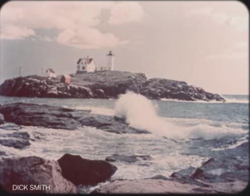 Seashore Maine 42